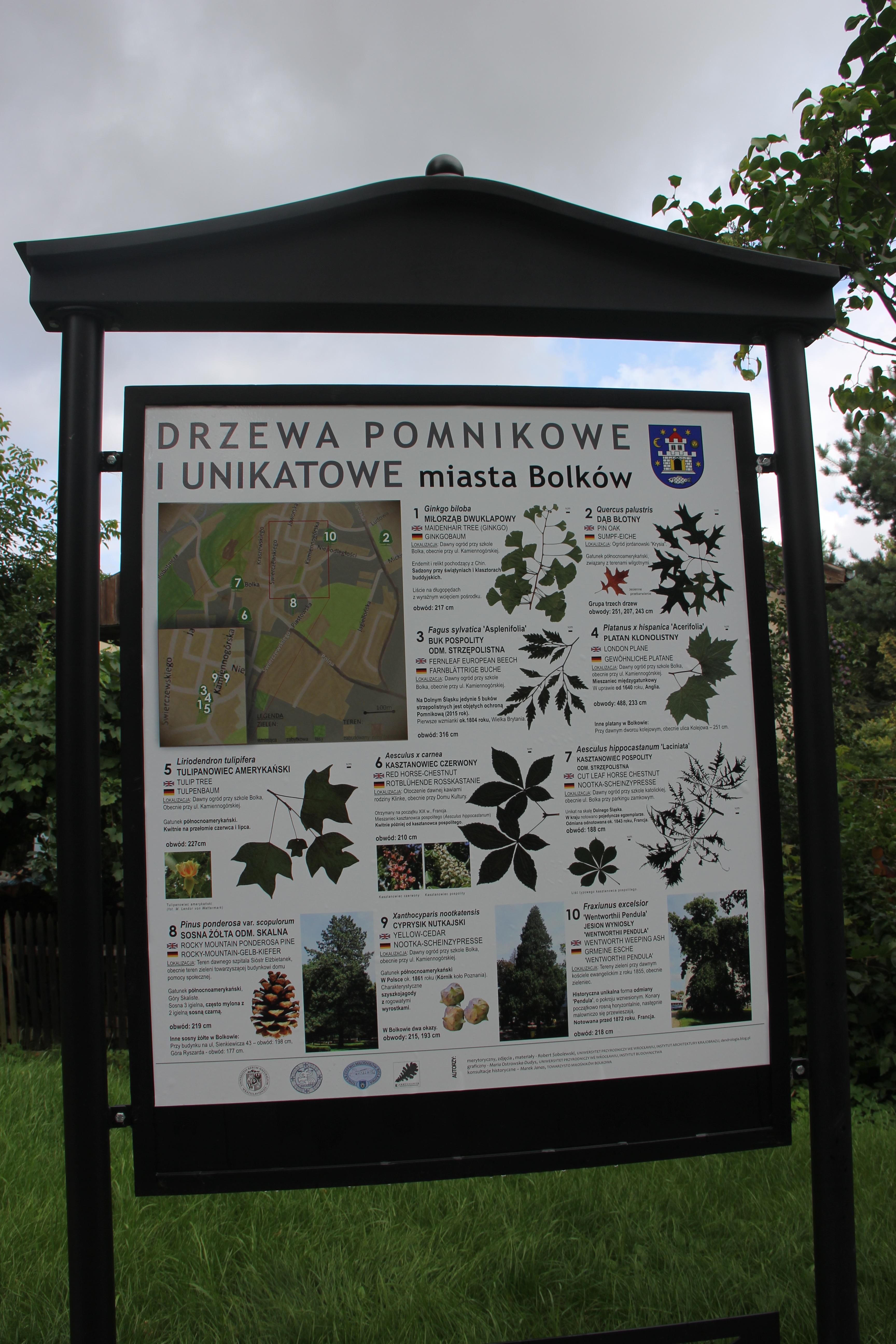Tablica drzewa unikatowe i pomnikowe